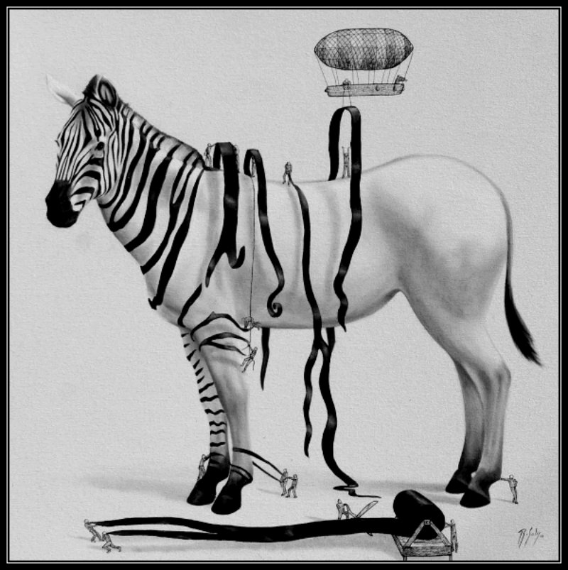 dressing-the-zebra-copy_custom-36196432e92011a2b10cc95395a0576f326c762c-s40-c85