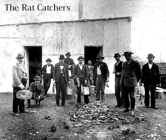 rat-catcher-photo-u2