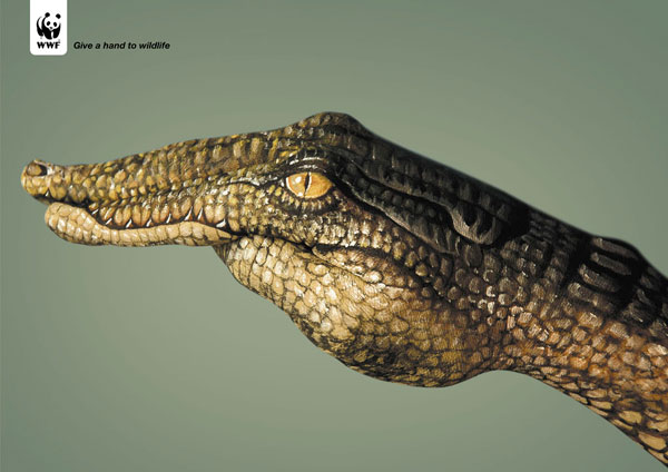 Hand-Paintings-Ads-Crocodile