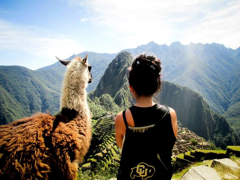 admiring-machu-picchu-with-a-llama