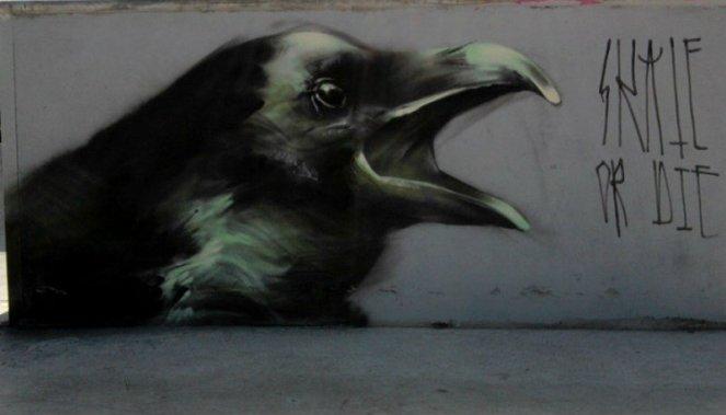 Ravens-by-Mesa-2