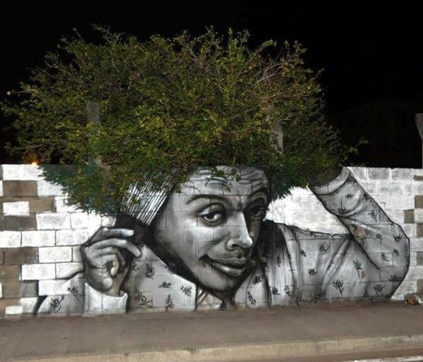 tree-graffiti-nuxono-xan