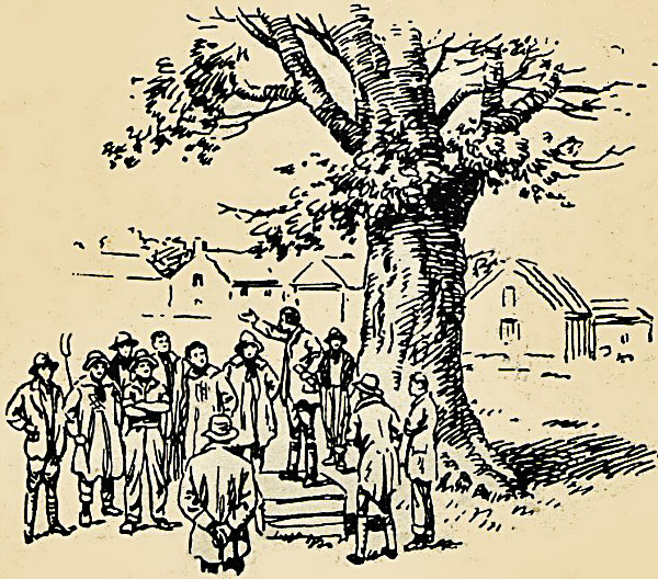tolpuddle martyrs tree-dorset-trade union