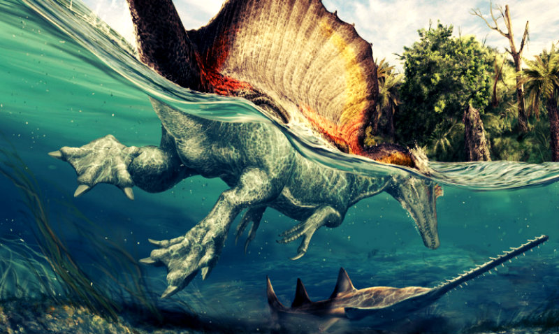 spinosaurus_swimming_1170-770x460