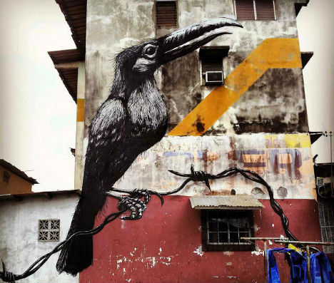 ROA-Panama-City-Street-Art-1