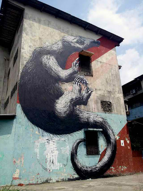 ROA-Panama-City-Street-Art-3