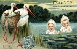 The Stork and HumanBirth.