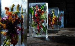 'Flowers in Ice'.