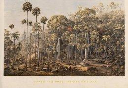 """""""Guérard's Landscapes""""."""