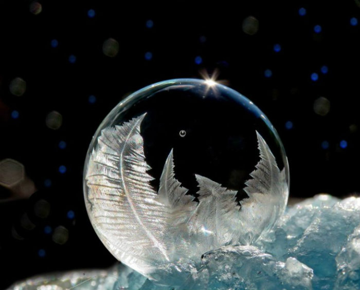 soap-bubbles-cheryl-johnson-71-730x589