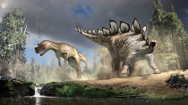 stegosaurus-illustration-1160