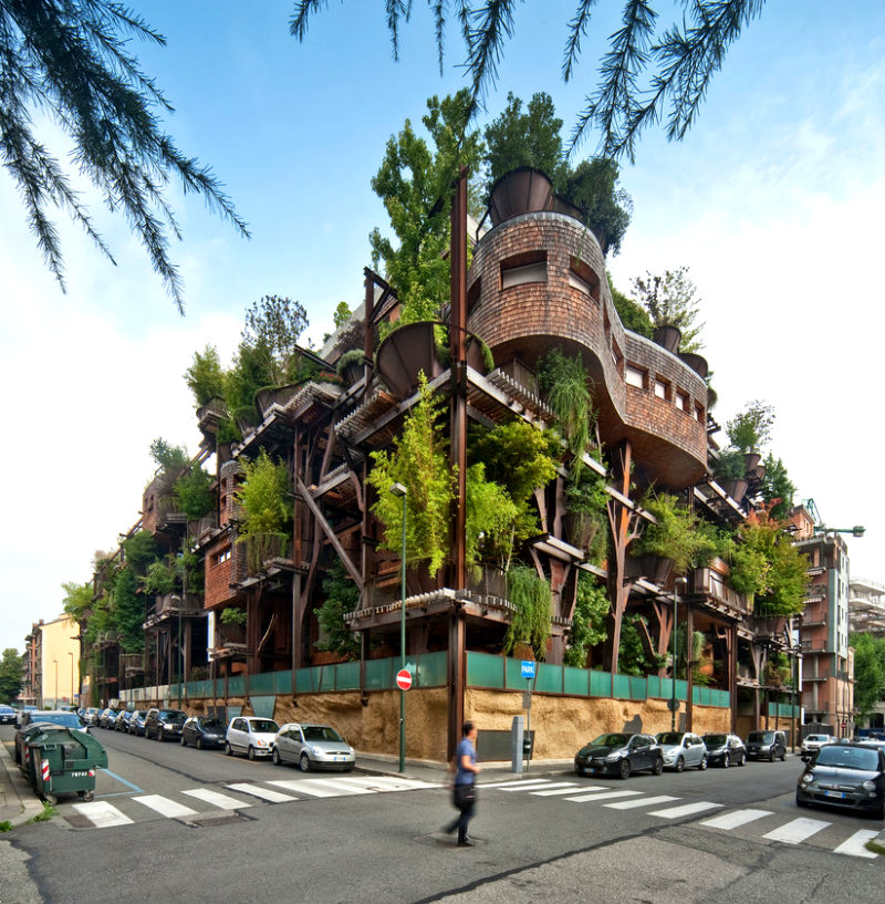 urban-treehouse-forest-plants