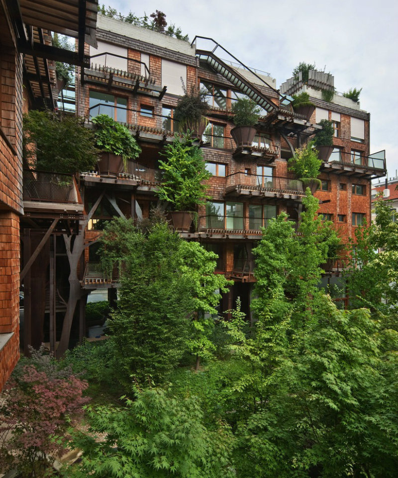 treehouse-apartment-4
