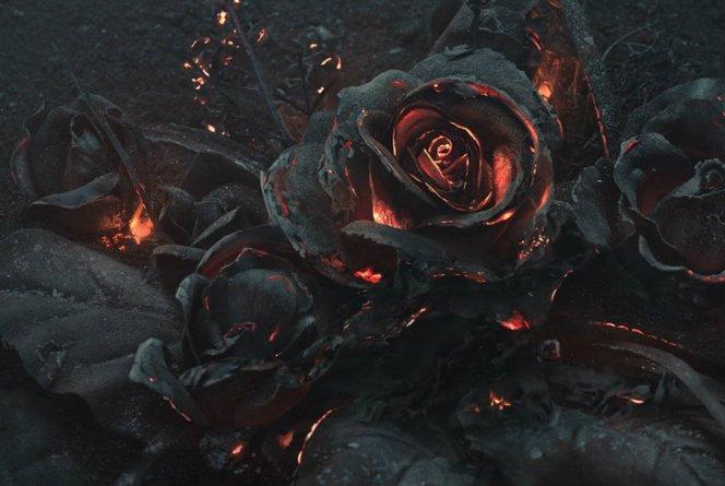 burnt-2