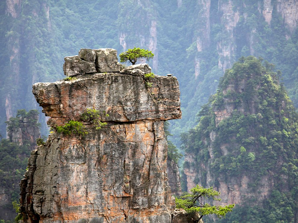 tree-pillar-rock-china_90677_990x742