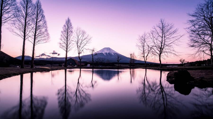 JapanImmersionPhotography3-900x504