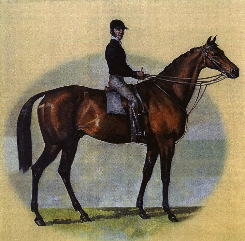 archer-horse3
