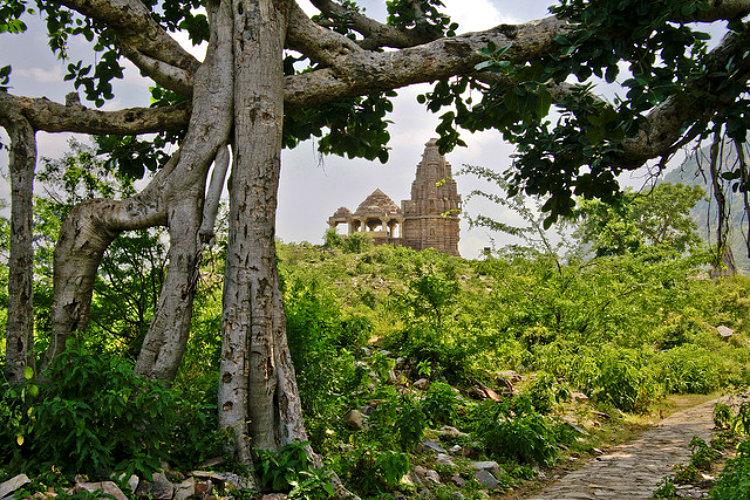 Bhangarh ghost city India 1