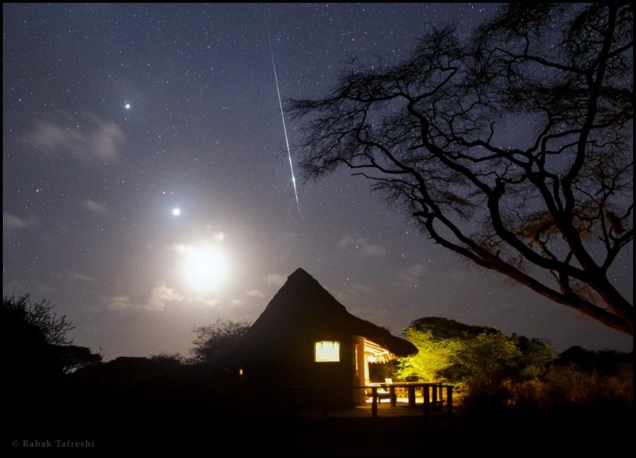 KenyaTauridTafreshi_DSC8027cs.jpg