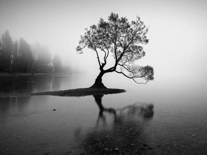 wanaka-fog_93384_990x742