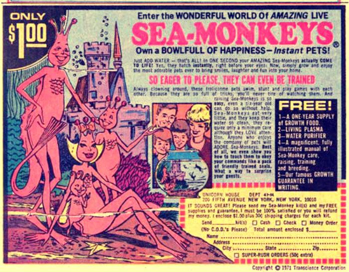 seamonkeys2_sm