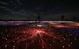 A Field of Light at Night in the RedCentre.