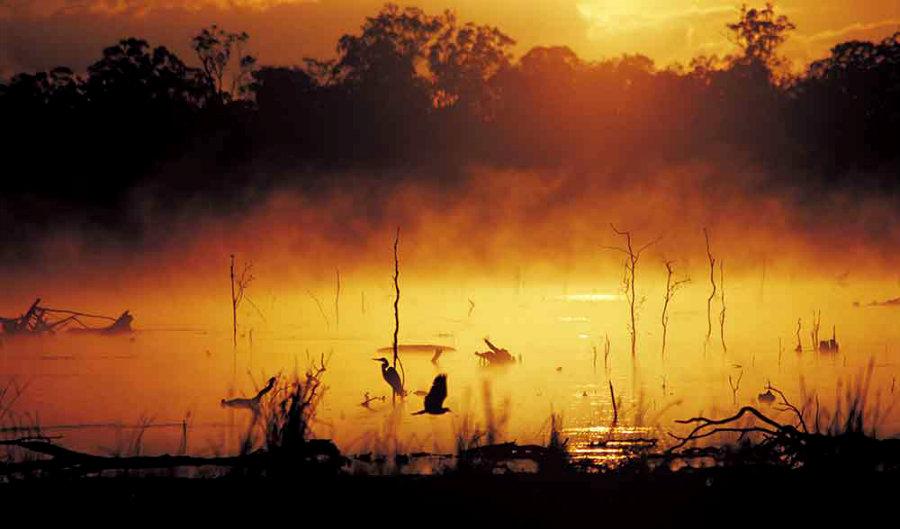 Mareeba_wetlands_queensland