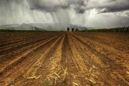 'Here Comes the Rain'Gordonvale.