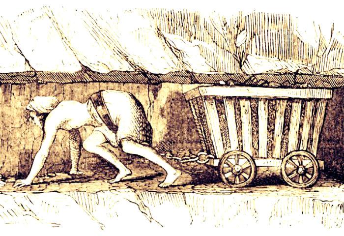 femaleminer