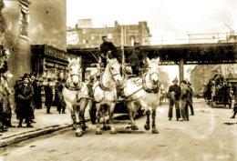 """Fire Horses: 1913."""