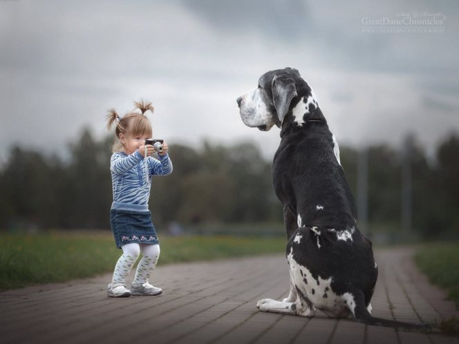 little-kids-big-dogs-photography-andy-seliverstoff-12-584fa91523670__880