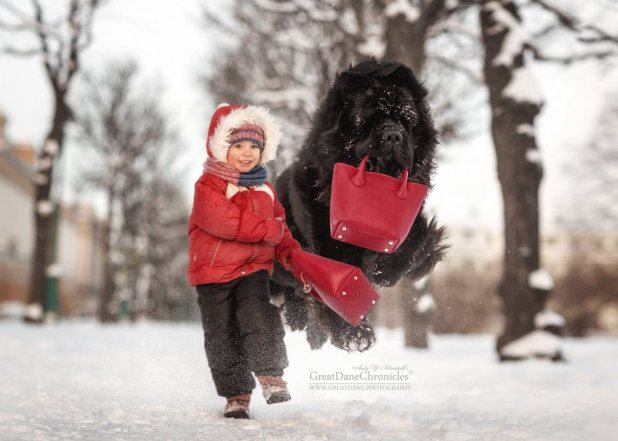 little-kids-big-dogs-photography-andy-seliverstoff-27-584fa932af588__880