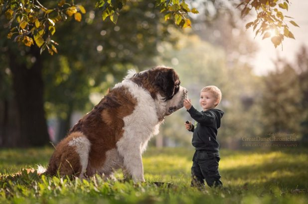 little-kids-big-dogs-photography-andy-seliverstoff-59-584fa985c3896__880