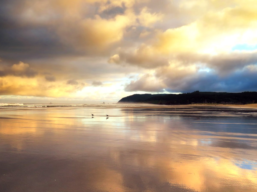 cannon-beach-at-sunrise-2-1-1-by-shawn-mcclure