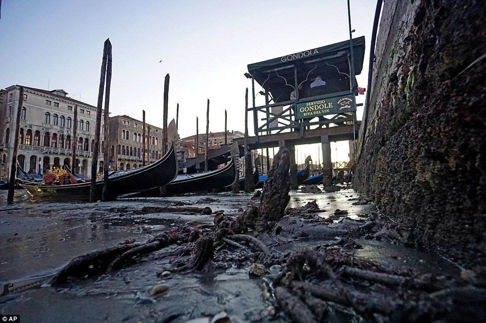 venice-low-tide-116